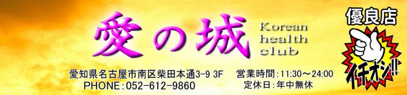 【愛の城】南区柴田/名古屋