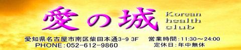 愛の城 柴田