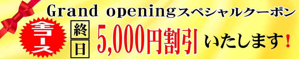 衝撃の全コース終日5,000円off♪