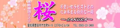 【桜】愛知/豊田