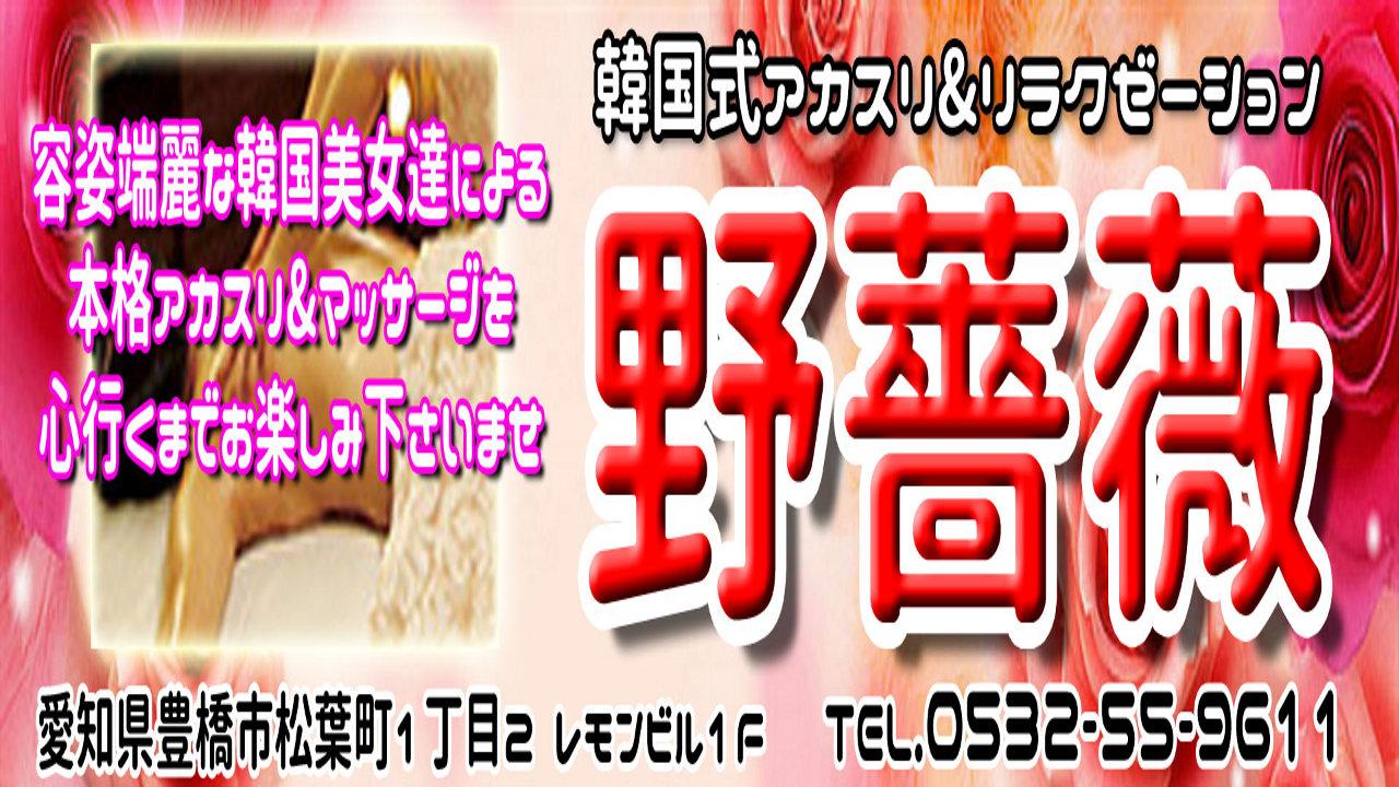 非公開: 【野バラ】豊橋/愛知