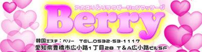 【Berry】豊橋/愛知