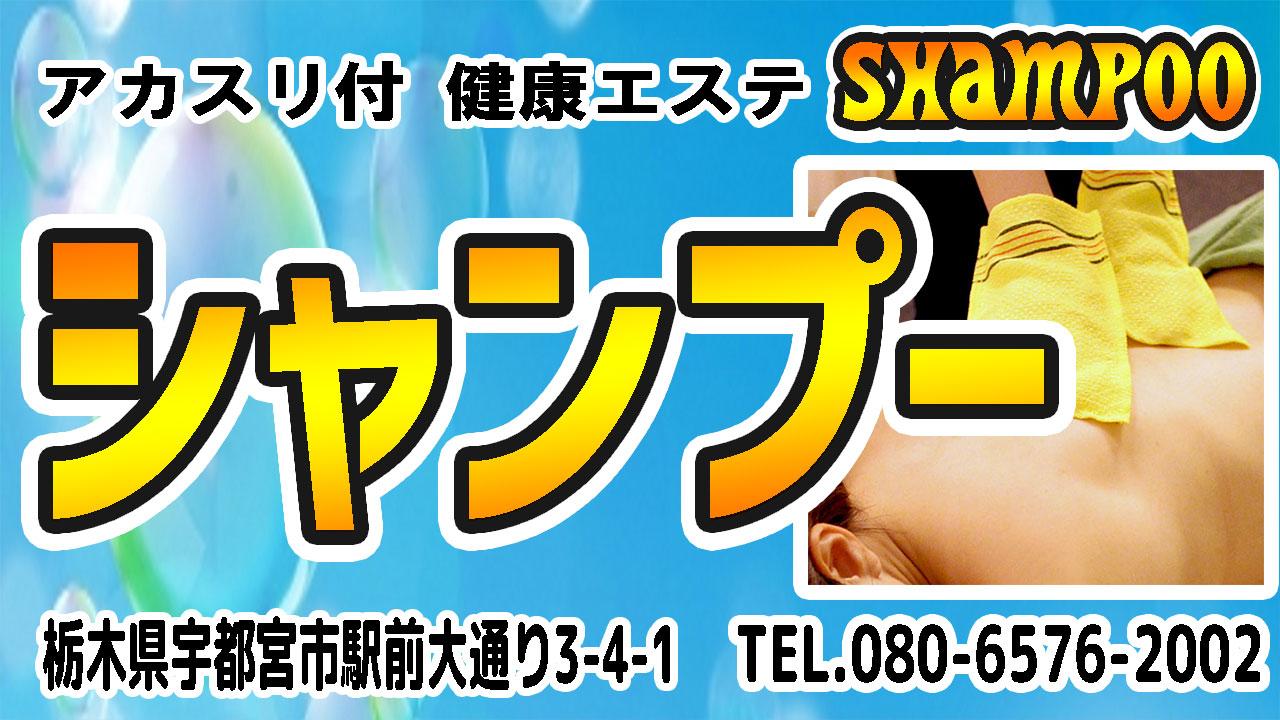 【シャンプー】宇都宮/栃木