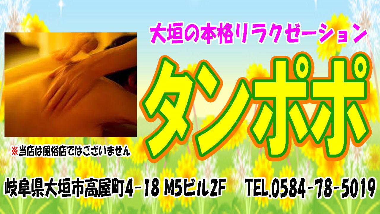 【タンポポ】大垣/岐阜